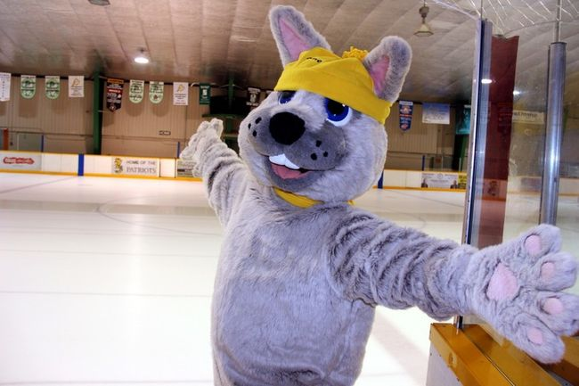 Sean Chase/Daily Observer Sno Pet will soon be ringing in 2018 at the Petawawa Civic Centre. First Night celebrations will take place there Sunday night from 6 p.m. to 9 p.m.