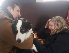 After being found, in the picture is Oscar, a six-month-old Australian Shepherd. Bursting in tears is his owner to the right. The puppy survived outside in the Arctic temperatures for three days. (Photo courtesy of Facebook)
