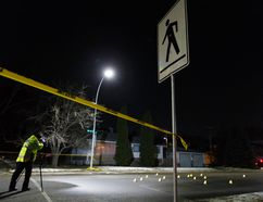 Edmonton Police Service officers investigate a hit and run at 96 Street and 71 Avenue last month. The driver of a white van who fled the scene has yet to turn themself in.