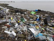 Plastics and other detritus line the shore of the Thames Estuary on Jan. 2, 2018 in Cliffe, Kent in Britain. Tons of plastic and other waste lines areas along the Thames Estuary shoreline, an important feeding ground for wading birds and other marine wildlife. According to the United Nations Environment Programme (UNEP), at current rates of pollution, there will likely be more plastic in the sea than fish by 2050. In December 2017 Britain joined the other 193 UN countries and signed up to a resolution to help eliminate marine litter and microplastics in the sea. It is estimated that about eight million metric tons of plastic find their way into the world's oceans every year. Once in the Ocean plastic can take hundreds of years to degrade, all the while breaking down into smaller and smaller 'microplastics,' which can be consumed by marine animals, and find their way into the human food chain.Photo by Dan Kitwood/Getty Images.