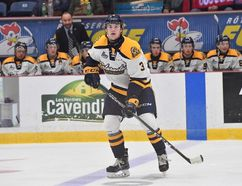 <p>Williamstown's Roddie Sandilands, patrolling the blue line for the Shawinigan Cataractes, in this photo from the QMJHL team. </p><p> Handout/Cornwall Standard-Freeholder/Postmedia Network
