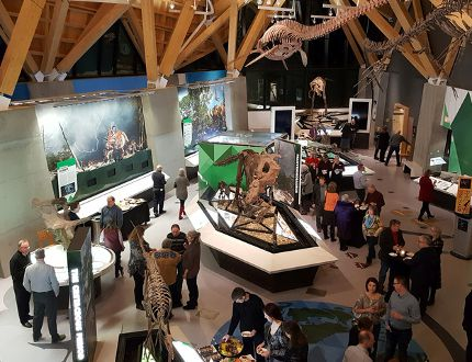 PHOTO SUPPLIED A new exhibit opened at the Philip J. Currie Dinosaur Museum on Jan. 13.