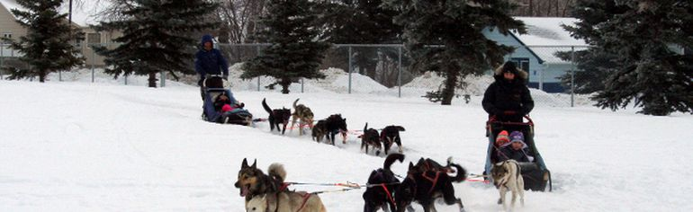 EE Oliver students benefited from Mommy and Me's sled dog tours event set up in the EE Oliver School yard