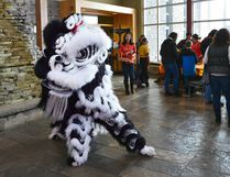 YinYang the Lion performs Saturday during Grey Bruce Chinese New Year celebrations at Grey Roots. DENIS LANGLOIS/THE SUN TIMES