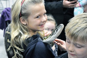 Shayden Guetter, 8, of Mitchell, is all smiles as she proudly holds this Burmese python but little brother Weston isn't so sure judging by his reaction during the West Perth Library's Family Day Sciensational Sssnakes! educational presentation held last Monday, Feb. 19 at the Mitchell & District Community Centre. ANDY BADER/MITCHELL ADVOCATE
