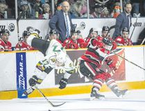 London Knights forward Nathan Dunkley collides with Ottawa 67's defenceman Merrick Rippon in Ontario Hockey League action Sunday in Ottawa. (Special to Postmedia News)