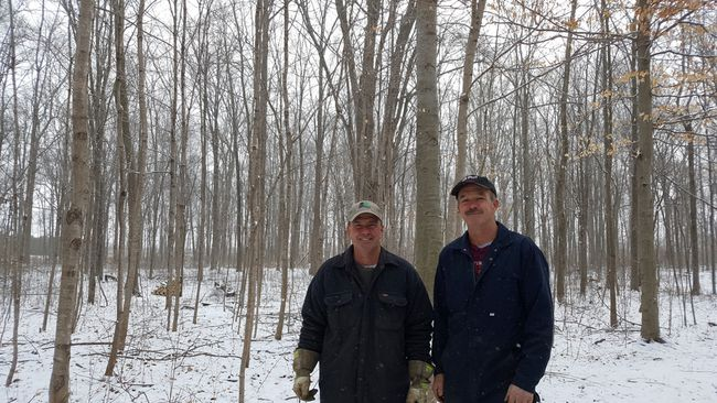 Bill Elgie, left, and his brother, Earl, are shown Tuesday in their Dawn Mills woodlot. Trevor Terfloth/Postmedia Network