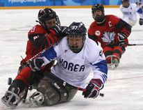 South Korea's Choi Si-woo tries to keep the puck away from Canada's Tyler McGregor of Forest, Ont., during a para hockey semifinal at the 2018 Winter Paralympics at the Gangneung Hockey Center in Gangneung, South Korea, on Thursday, March 15, 2018. (NG HAN GUAN/The Associated Press)