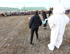 Scattered across the rear grass at the Seaforth Agriplex, 5,000 pieces of candy were available last Saturday for the 2018 Community Easter Egg Hunt. (Shaun Gregory/Huron Expositor)