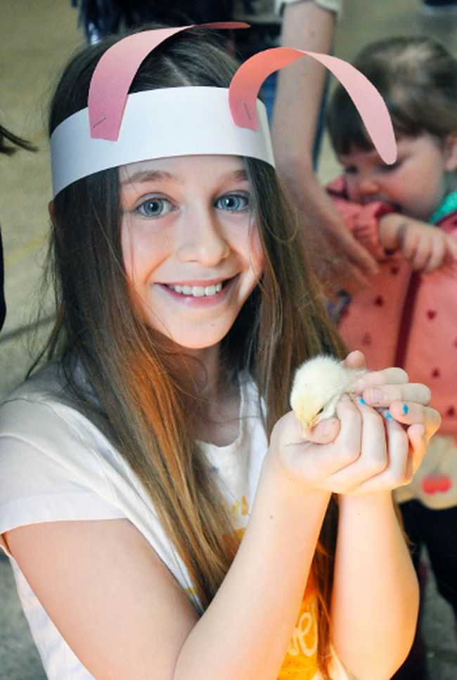 Evangeline Pearn, 10, is all smiles as she carefully holds a baby chick last Saturday, March 31 during the Optimist Club of Mitchell's Easter event held at the Mitchell & District Community Centre. ANDY BADER/MITCHELL ADVOCATE