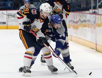 Cole Candella, right, of the Sudbury Wolves and Aaron Luchuk of the Barrie Colts, battle for the puck during OHL action at the Sudbury Community Arena in Sudbury, Ont. on Friday January 26, 2018. John Lappa/Sudbury Star/Postmedia Network John Lappa