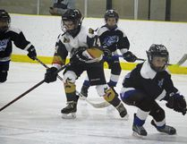 Some minor hockey players in action at Stride Place. (file photo)