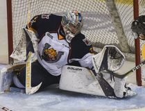 Barrie Colts goaltender Leo Lazarev, seen giving up a goal to Kingston Frontenacs' Linus Nyman in a game on Feb. 19 at the Rogers K-Rock Centre, made 40 saves on Friday night at the Colts downed the Frontenacs 4-1 in Game 2 of their Ontario Hockey League Eastern Conference semifinal in Barrie. (Julia McKay/Whig-Standard/Postmedia Network)