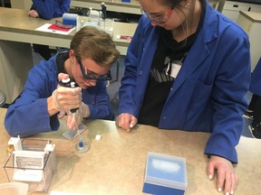 Derek Strickland and Dane Van Tonder practice extracting solutions before getting their DNA mixtures. (Courtesy of Bryn Lewis)