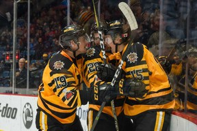 An excited Navrin Mutter (No. 15, right) jumps on the boards in celebration of his first Ontario Hockey League goal on Nov. 25 against the Ottawa 67s. Mutter is joined by teammates Ben Garagan (No. 19, left) and Marian Studenic (No. 28, middle). (Brandon Taylor/Hamilton Bulldogs)