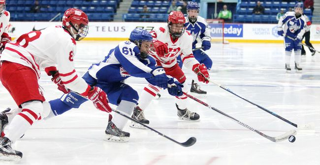 2018 Telus Cup action, Sudbury Nickel Capital Wolves vs Notre Dame Hounds in Sudbury, Ont. on Tuesday April 24, 2018. Gino Donato/Sudbury Star/Postmedia Network