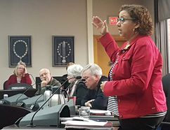 <p>Coun. Bernadette Clement said the 2018 budget was one of the hardest budgets council has dealt with on Monday April 30, 2018 in Cornwall, Ont. The budget passed in an 8-3 vote. </p><p> Alan S. Hale/Cornwall Standard-Freeholder/Postmedia Network