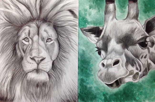 """A wide variety of works of art will be on display at Altona's Gallery in the Park from now until May 13. The exhibit features the work of arts students from W.C. Miller Collegiate, Garden Valley Collegiate and Morden Collegiate. Pictured is """"Lion and Giraffe"""" by Miller artist Emily Zacharias."""