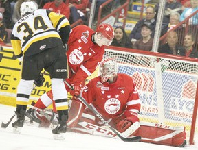 Action from the Ontario Hockey League championship series between the Hamilton Bulldogs and Soo Greyhounds. Postmedia/Sault Star
