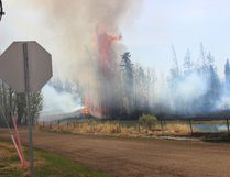 Trees erupt in flames near the intersection of Township Road 564 and Range Road 211 in northern Strathcona County on May 14. Zach Mueller/News Staff