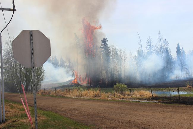 As of Wednesday, the Strathcona County wildfire in the northern rural area, which has burnt more than 600 acres of land, has been contained and is under control.  Zach Mueller/News Staff