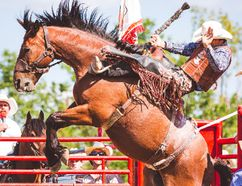Plenty of action will be in full display during the two-day rodeo which is coming to Keterson Park June 30-July 1. EMILY GETHKE PHOTO
