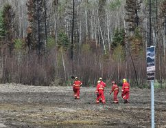 A crew of firefighters from Calgary look for hot spots along a fire guard behind homes in the north end of Timberlea on June 2, 2016. The fire guard was carved out of a trail system shortly after the May 3, 2016 wildfire. Ed Kaiser/Postmedia Network