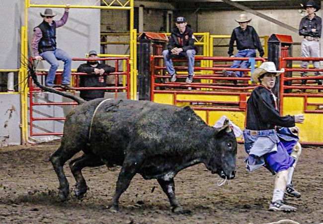 J.C. Charyk student Walker Hutton is making his way to Nationals in Rock Springs, Wyoming after ending up season leader in the steer wrestling event. That, and bullfighting, picured here, are his two favourite events.