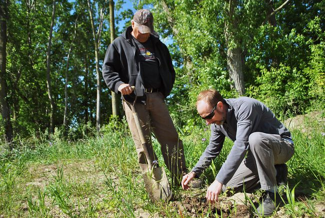 Chuck Pegg and Greg Van Every, environmental project coordinator with the Lower Thames Valley Conservation Authority, plant trees on Pegg's property in the Rondeau Bay area. (Tom Morrison/Chatham This Week)