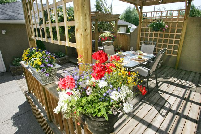 A deck offers an opportunity for container gardener, notes columnist Denzil Sawyer. (Postmedia Network)