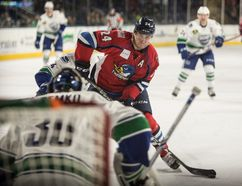 Simcoe's Ryan Horvat (25) of the Springfield Thunderbirds shook off an early season shoulder injury to have one of his best seasons in the American Hockey League to date. Photo courtesy Danny Baxter