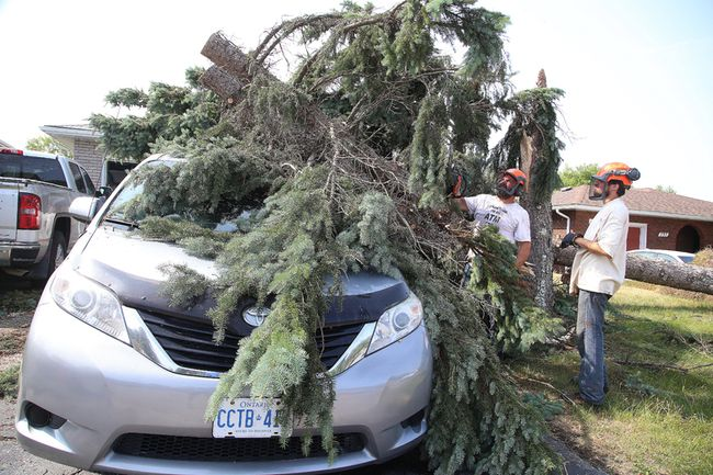 A crew from The Tree Guy cuts trees that fell on a vehicle on Grandview Boulevard in Sudbury on Tuesday. Some parts of Greater Sudbury experienced a downburst on Monday evening. Gino Donato/Sudbury Star/Postmedia Network