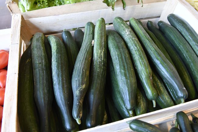 Cucumbers on display in a grocery story in France that's dedicated to the reduction of food waste. In Chatham-Kent, Toronto-based Foodrescue is partnering with the Public Health Unit to help reduce food waste in Chatham-Kent. Thomas Gregardis/Getty Images