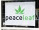 Kevin Hampson/Daily Herald-Tribune