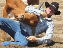The 2nd Dungannon Pro Rodeo was again a live spectacle to see and was nothing short of amazing over two days that displayed pure power and pro performances from July 14-15, 2018. Pictured: Bronco riders were one of the many attractions, as man took on beast in a struggle to see who could control who.