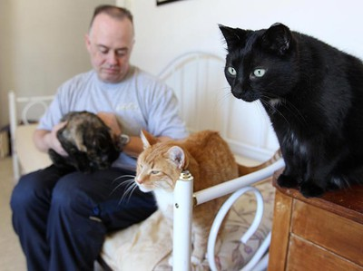 Cat owner Lyle Lay plays with some of his 29 cats in his Winnipeg home Monday March 7, 2011. The city granted Lay a variance to keep all of the cats in his home, despite a bylaw limiting the number of felines per household to three. (BRIAN DONOGH/Winnipeg Sun)