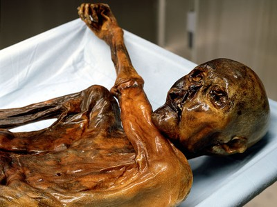 """Otzi"", Italy's prehistoric iceman, probably does not have any modern day descendants, according to a study published on October 30, 2008. A team of Italian and British scientists who sequenced his mitochondrial DNA -- which is passed down through the mother's line -- found that Otzi belonged to a genetic lineage that is either extremely rare or has died out. (Photo: South Tyrol Museum of Archaeology - www.iceman.it)"