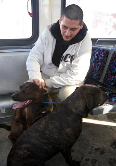 Darwin Edwards pats his dogs on a transit bus after being evacuated from his apartment block due to a house fire next door at 465 Pritchard Ave. in Winnipeg Sunday, Jan. 30, 2011. There were no known injuries in the blaze that broke out around 8 a.m. (BRIAN DONOGH/Winnipeg Sun)