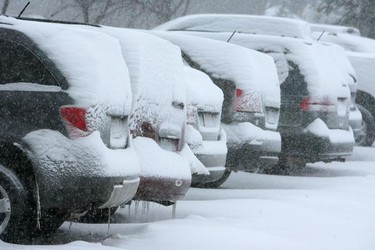 Snow gathers on top of vehicles in a parking lot, Jan. 28, 2011. An Alberta clipper made its way through Manitoba Friday, dumping large amounts of snow in a short period of time. (MARCEL CRETAIN/Winnipeg Sun)