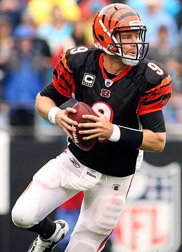 Cincinnati Bengals quarterback Carson Palmer drops back to pass during their NFL football game against the Carolina Panthers in Charlotte, North Carolina on Sept. 26, 2010. (REUTERS)