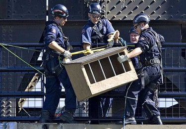 Members of the Edmonton Fire Rescue's technical rescue team lower a nest for a pair of peregrine falcons on the High Level Bridge. (AMBER BRACKEN/EDMONTON SUN)