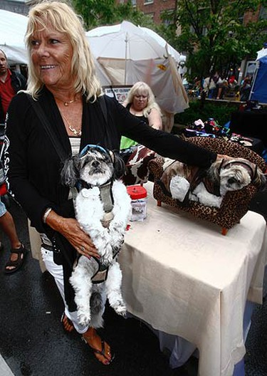 Gizmo hangs around in a harness made by Penny while Angel takes a nap on the couch at the eighth annual Woofstock in Toronto. The festival is the largest of its kind in North America.  (JACK BOLAND, Toronto Sun)