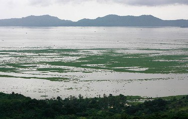 A view of the Laguna de Bay overflowing and submerging nearby rice fields with floods brought on by the continuous rains of Typhoon Ketsana, locally known as Ondoy, in Laguna, east of Manila on Sept.  28, 2009. The Philippines appealed for international aid to help tens of thousands marooned by flashfloods, and apologized for the delays in rescue efforts to avoid potential political fallout from the crisis.  (REUTERS)