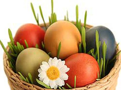 Eggs are one of the most nutritious foods in our diet, rich in protein, minerals, and vitamins. (Shutterstock)