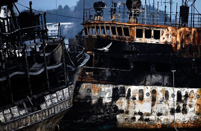 A seagull flies in front of burnt ships in Kesennuma, Miyagi Prefecture, after the area was devastated by a magnitude 9.0 earthquake and tsunami March 31, 2011.  REUTERS/Damir Sagolj