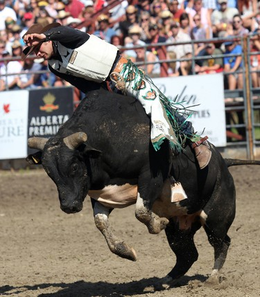 """Beau Brooks rides """"I'm a High Jacker"""" the bull during the final day of the Bulls for Breakfast at the Big Valley Jamboree in Camrose, AB on July 31, 2011. LAURA PEDERSEN/EDMONTON SUN QMI AGENCY"""