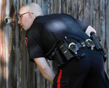 A police officer peeks into a backyard while hunting for bear in southwest Calgary on Saturday, September 3, 2011. At least one bear (possibly two) was seen in Oakridge and Palliser. Despite numerous calls from the public, the police never did find any bruins. (LYLE ASPINALL/QMI Agency)