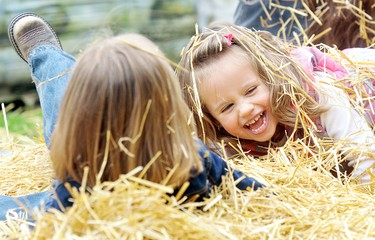 Bridget MacLeod, 3, spent her birthday romping in a haystack with her cousin Hayley Clark, 3, at the fourth annual Harvest Fest at Kentwood Gardens outside of Dresden, Ont., Sept. 17, 2011. (DIANA MARTIN/QMI AGENCY)