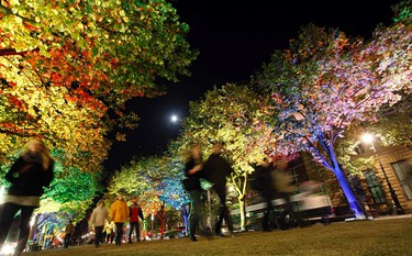 The Unter den Linden boulevard is illuminated during the Festival of Lights in Berlin October 12, 2011. Several landmarks of the German capital, including boulevards, squares, towers, historical and modern buildings, will be illuminated during the festival.REUTERS/Fabrizio Bensch