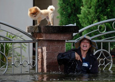 A woman gestures towards passing boats as her dog stands on a fence in flooded Pathum Thani province October 14, 2011. Thai Prime Minister Yingluck Shinawatra tried to reassure residents of Bangkok on Friday that the capital should largely escape the flooding that has covered a third of the country since July and caused damage of at least $3 billion. REUTERS/Damir Sagolj